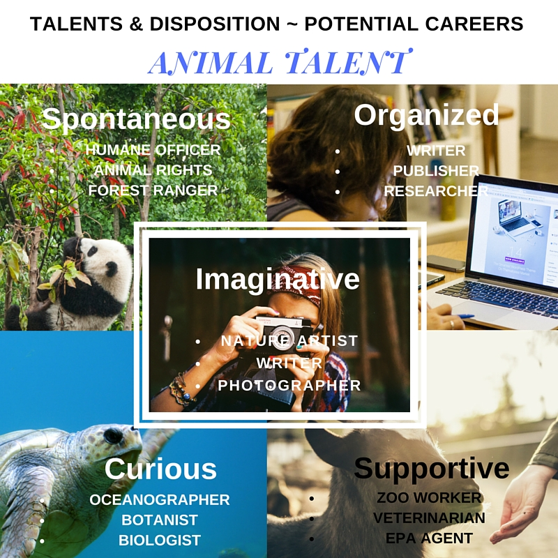 Animal Talent Disposition Potential Careers (4)
